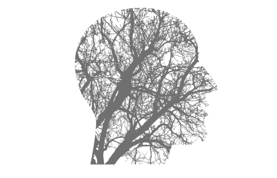 Outline of human head with tree branch pattern inside