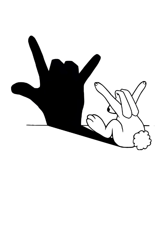 rabbit hand shadow 2