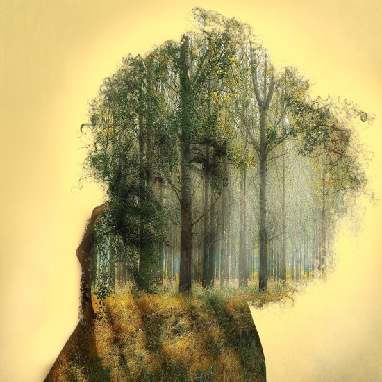Double-exposure of woman's face and forest scene