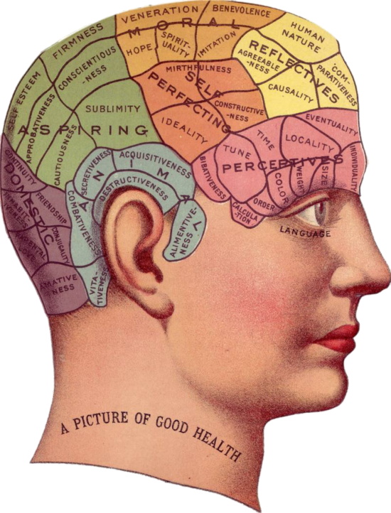 Vintage diagram of parts of the mind